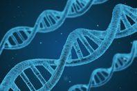 adn-area-biotecnología-red crusoe-(198X132)